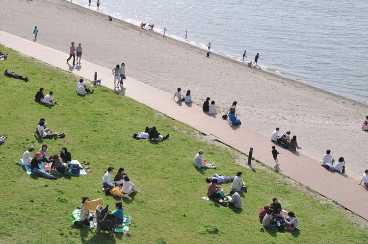 公園 お 台場 海浜